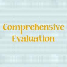 Comprehensive Evaluation